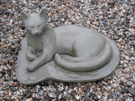 Cat on Pad