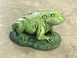 Jeremiah the Bullfrog