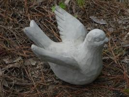bird 124