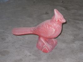 bird104
