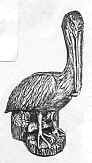 Pelican on Pile