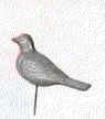 bird111