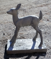 deer103