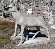 deer106