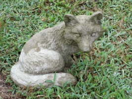 fox101