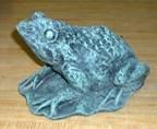 Medium Frog on Pad