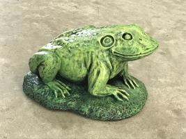 Jeremiah the Bullfrog